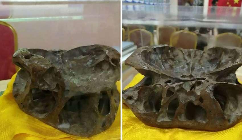 Investigador exhibe el cráneo de un ser extraterrestre