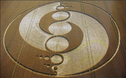 toda la verdad sobre los Círculos de las Cosechas