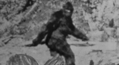 el Bigfoot existe